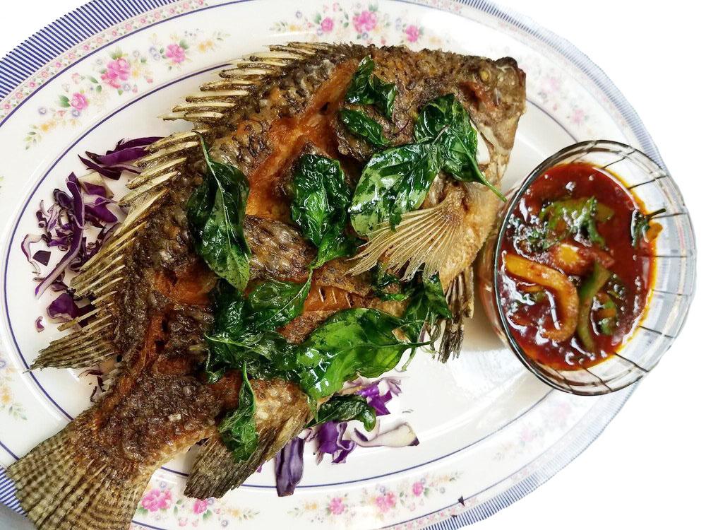 Pla Tod Thai Herb Image