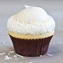 Vanilla - Mini Image