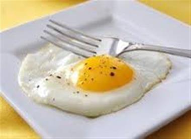 1 Egg Image