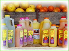Fresh Lemonade Image
