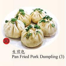 30. Pan Fried Pork Dumpling (3)