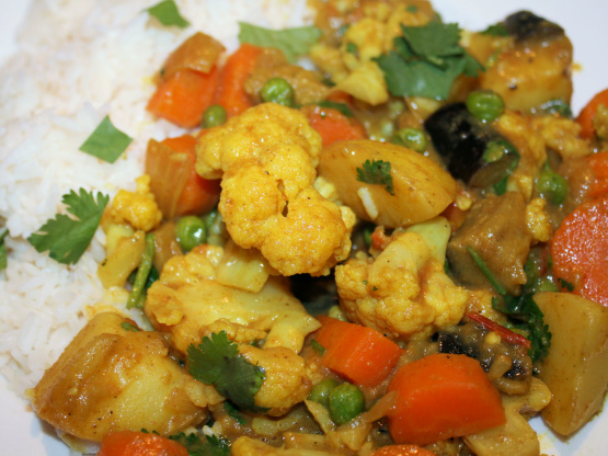 Madras Vegetable Curry Image