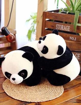 Chinese Panda 20 inch Plush Toy Image
