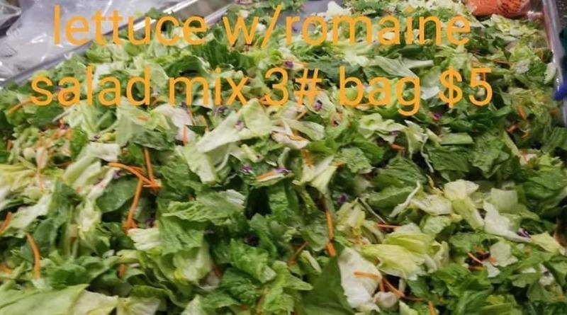 Lettuce w/ Romaine Salad Mix - 3 lbs
