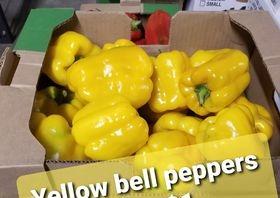 Bell YELLOW Pepper 1 each