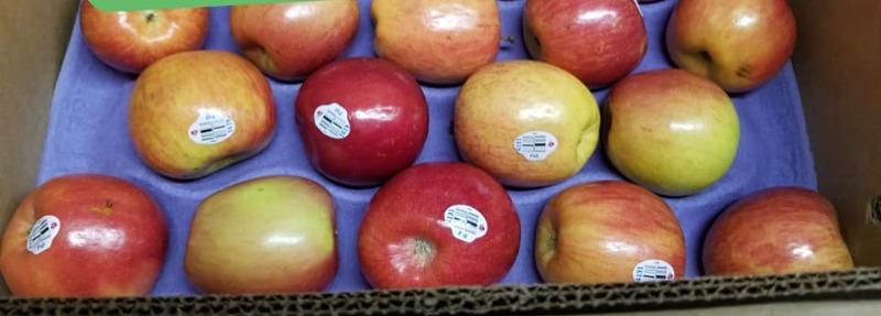 Apples Fuji - 5 lb Bag