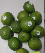 Limes 1 dozen