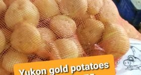 Yukon Gold potatoes 5LB