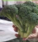 Broccoli Crown 1 each