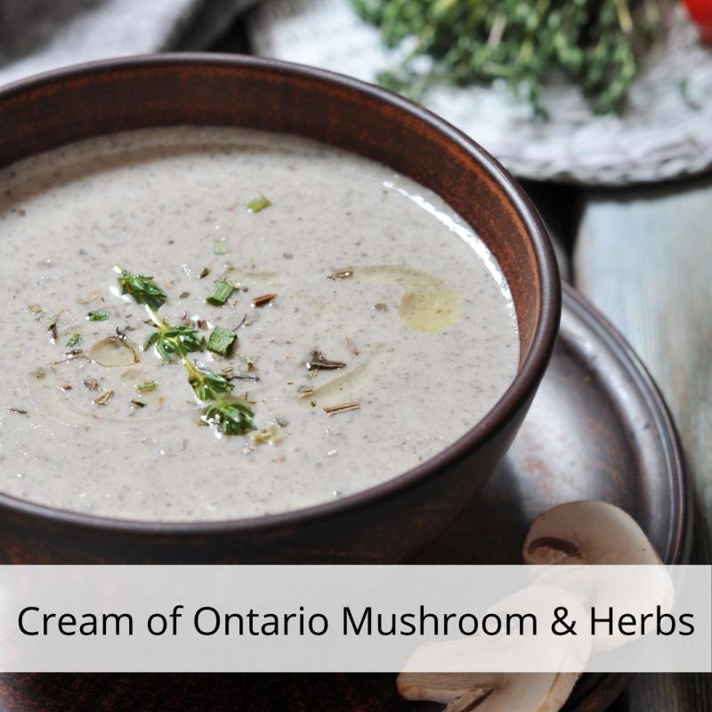 Cream of Ontario Mushroom & Herbs Image