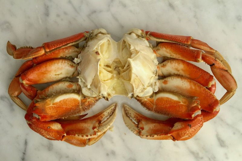 COOKED and CLEANED CRAB Image