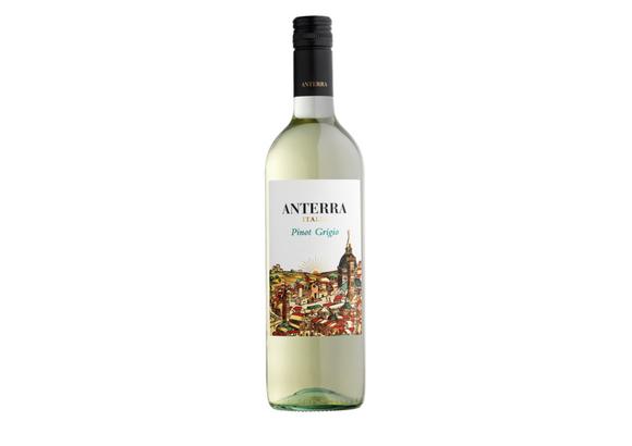 Anterra   Pinot Grigio   Italy Image