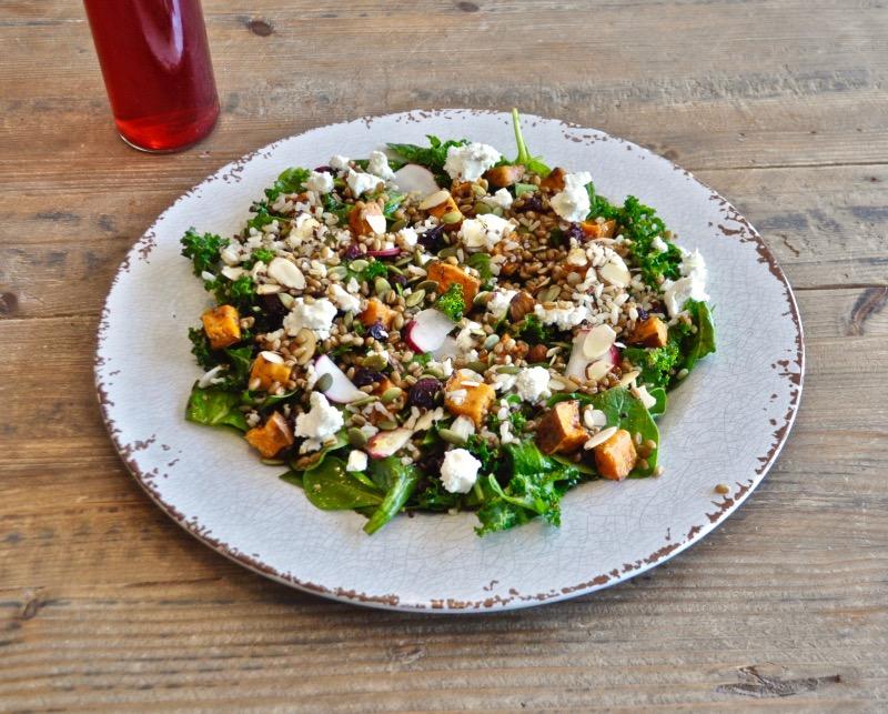 Fri - Turkey Primo Kale salad Image