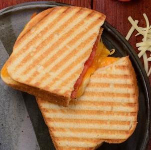 Three Cheese & Tomato Panini Image