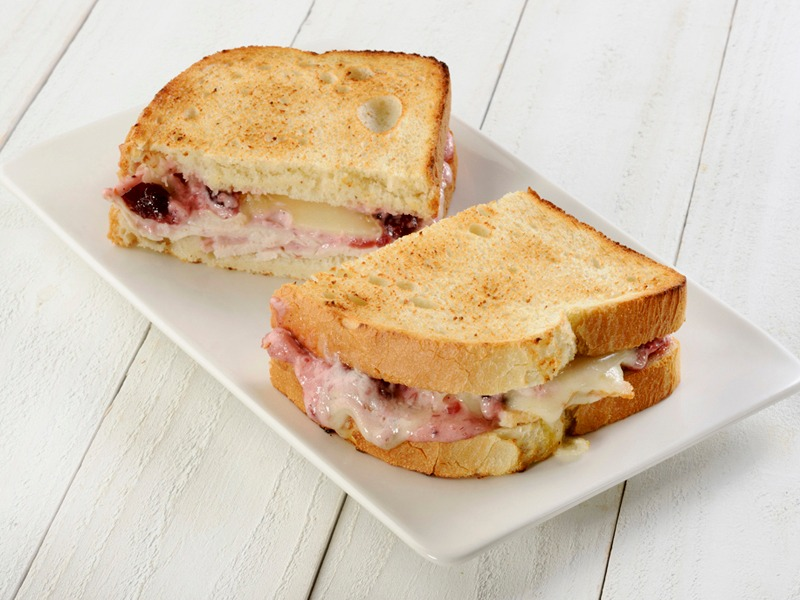 Turkey Cranberry - Toasted Sandwich Image