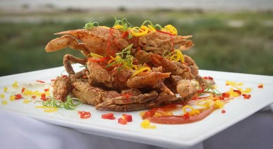 Crispsy Softshell Crab with Mushroom Sauce