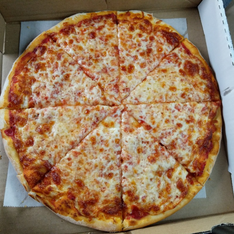 Plain Pizza Image