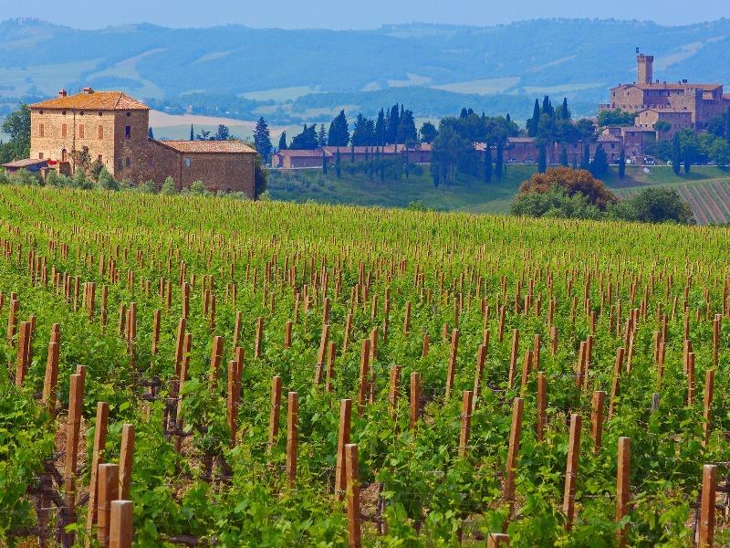 Early Bird Ticket: Wine Tastings Wed April 21st | Giro d'Italia Image