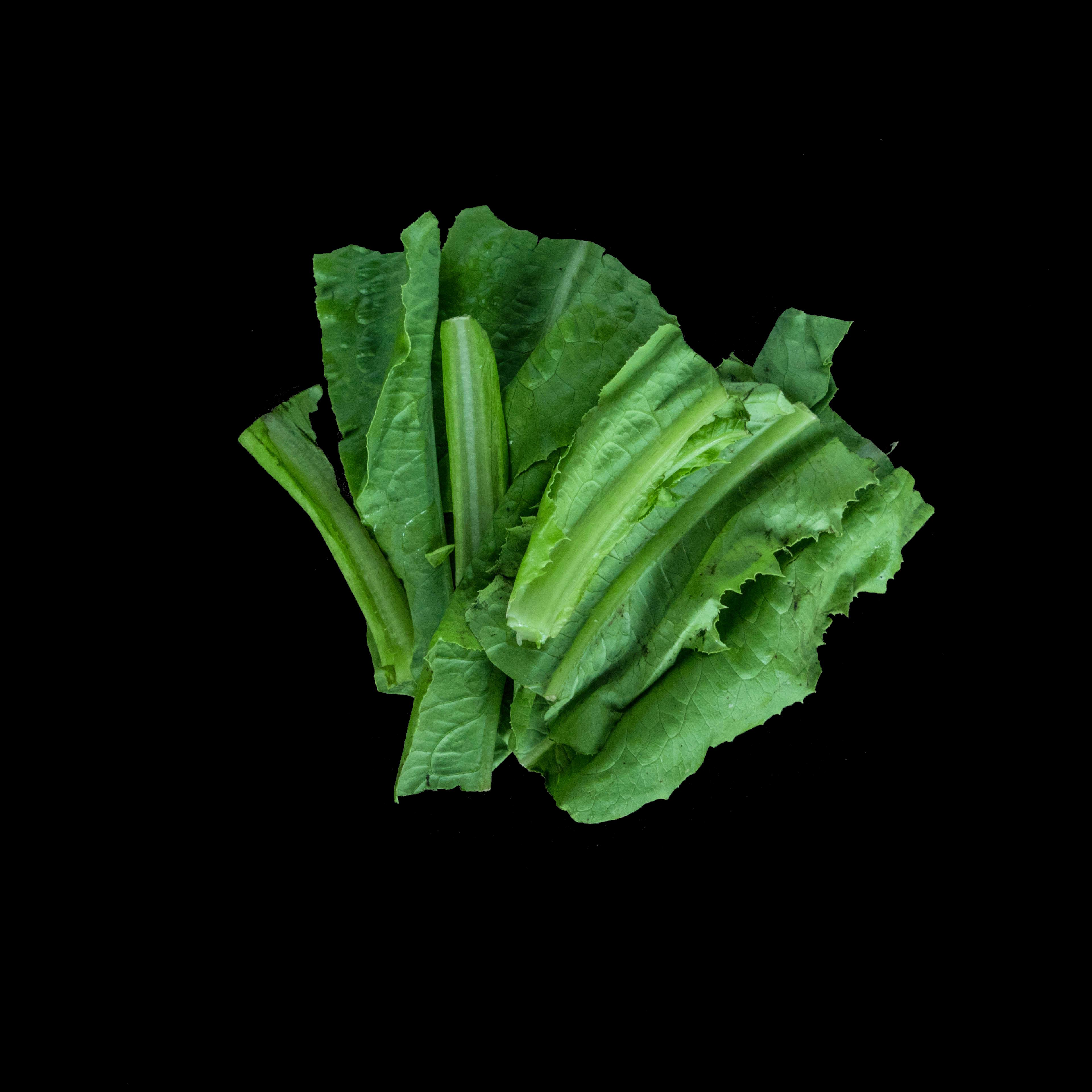 60. A菜 A Choy Image