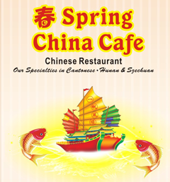 Spring China Cafe - Houston