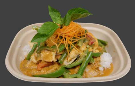 19 Panang Curry Image