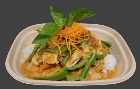 19 Panang Curry Image