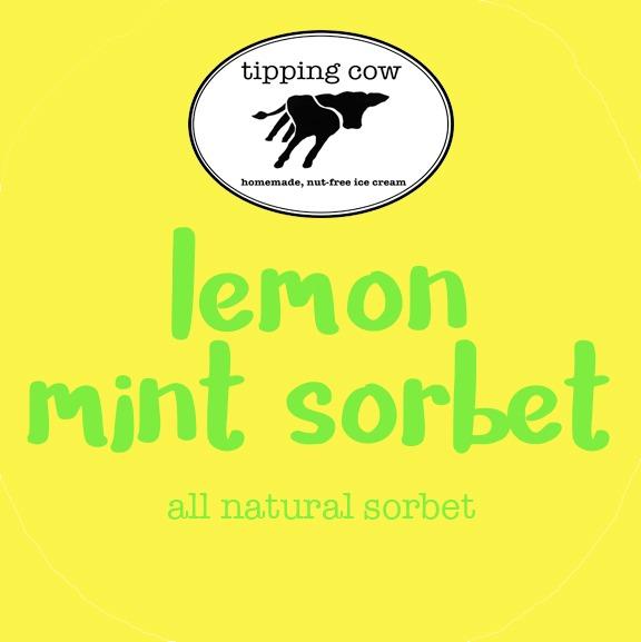 Lemon Mint Sorbet Image