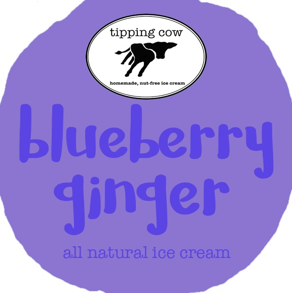 Blueberry Ginger Image