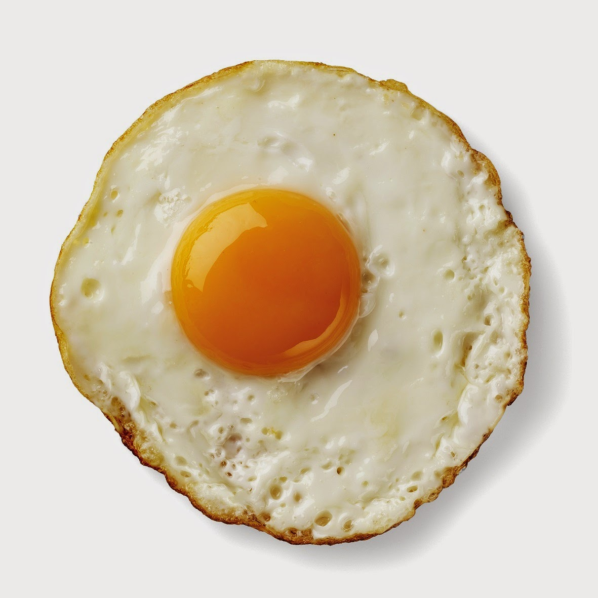 One Egg Image