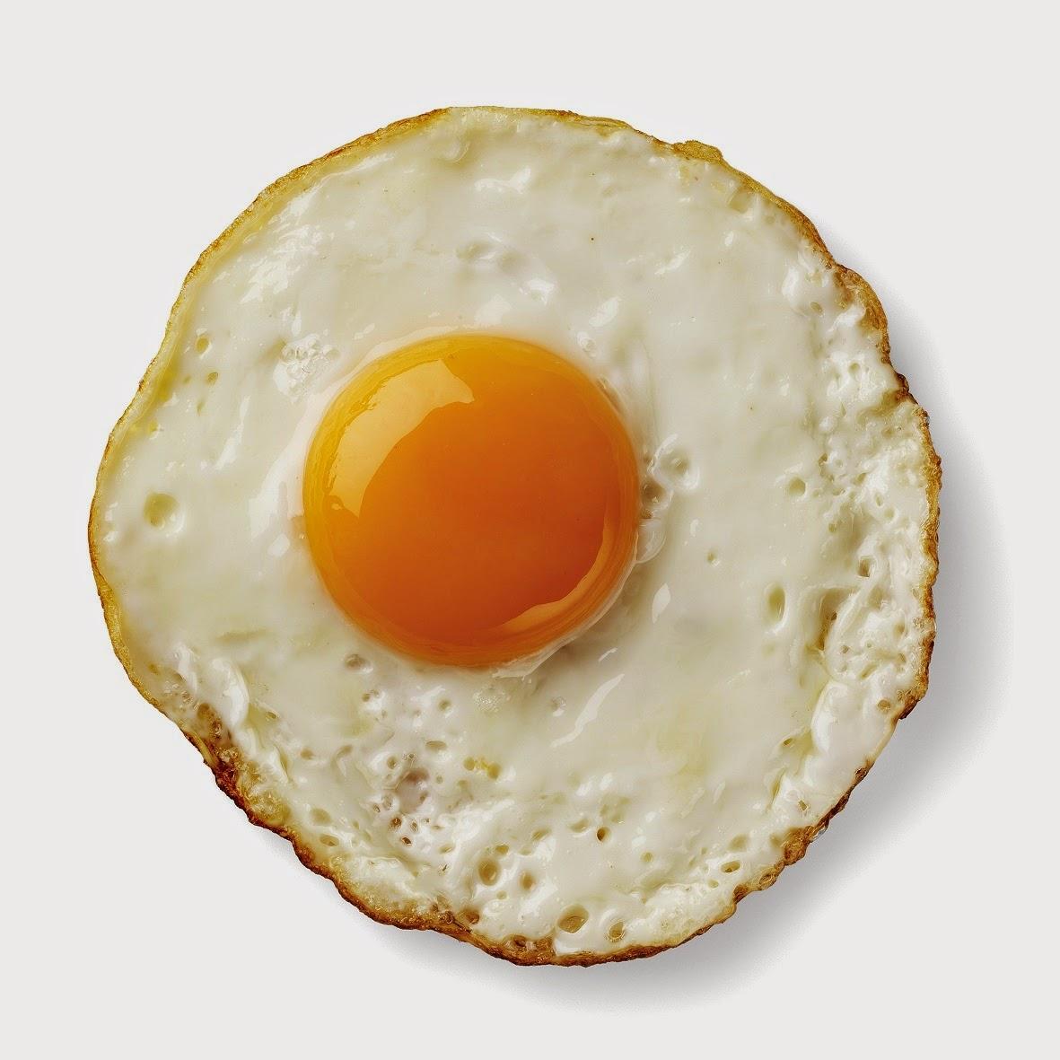 One Egg Image